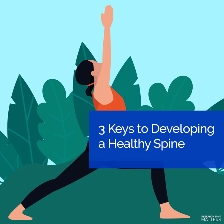 3 Keys To Developing A Healthy Spine in Vienna VA